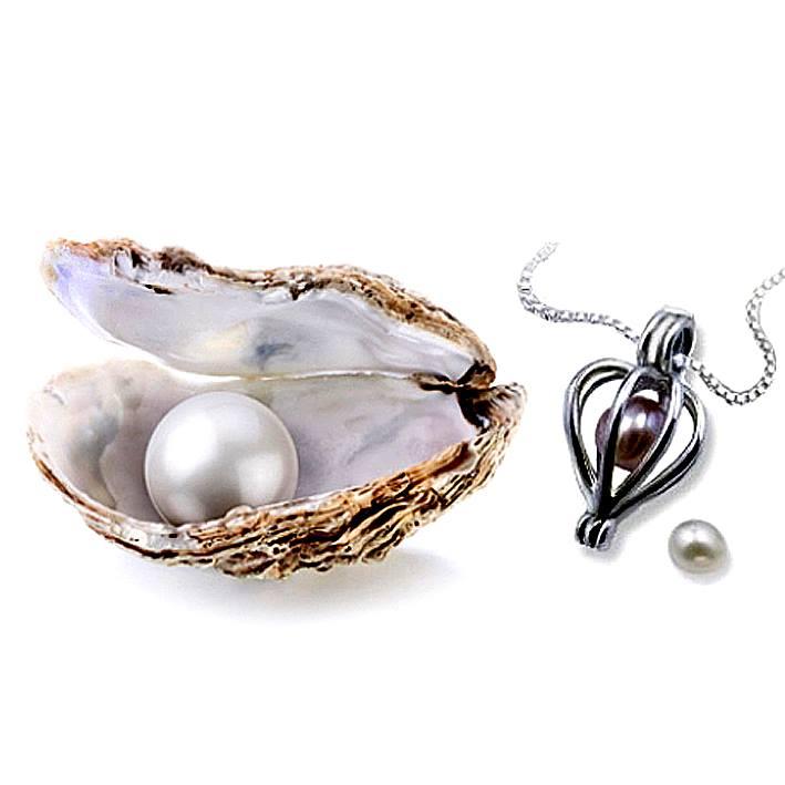 perla na kysmeta (1)
